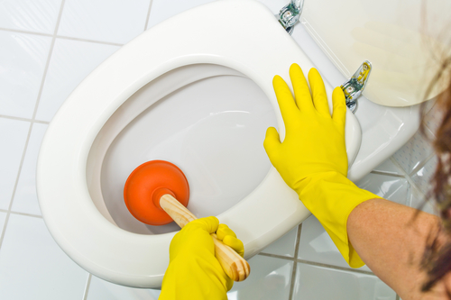A basic plumbing skill is unclogging the toilet.